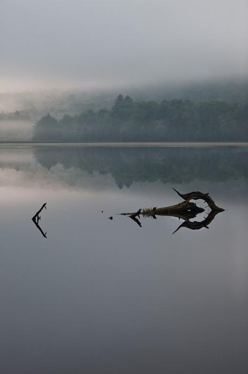 Lefferts Pond_Reflection